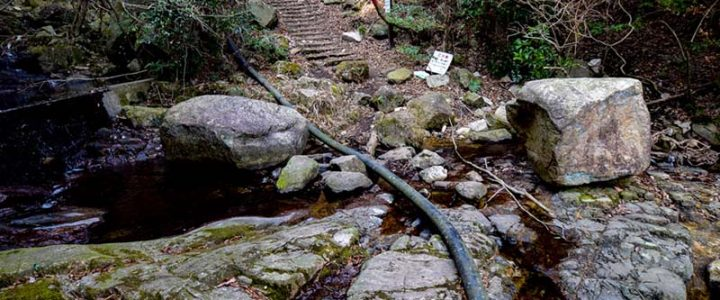 【六甲山】杣谷下り単独行 2018/2 下りもまた楽し。