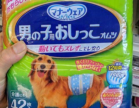 買い物リスト:老犬用